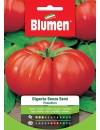 Pomodoro Gigante senza Semi - Blumen