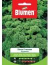 Prezzemolo Riccio Francese - Blumen