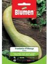 Zucca Trombetta D'Albenga - Blumen