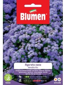 Agerato Nano Blu - Blumen