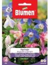 Aquilegia dei Giardini in Miscuglio - Blumen