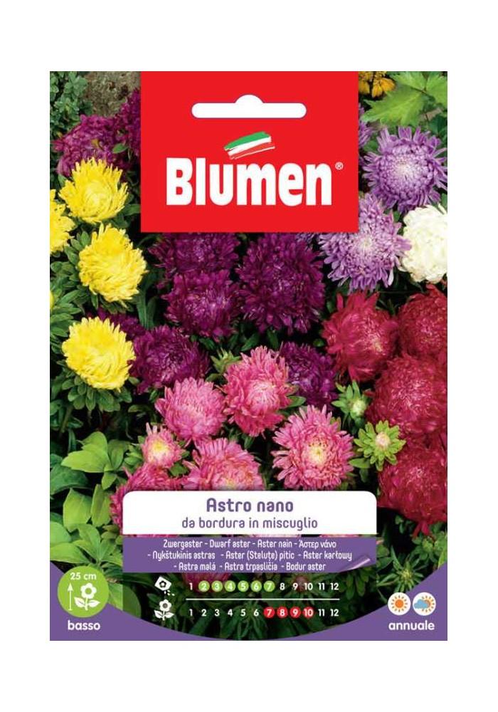 Astro Nano in Miscuglio - Blumen