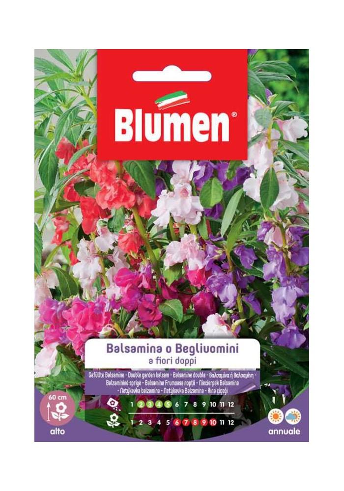 Balsamina o Begliuomini a fiori doppi - Blumen