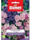 Campanula Doppia in Miscuglio- Blumen