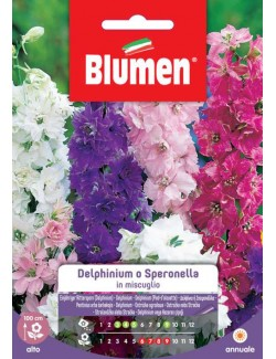 Delphinium o Speronella in miscuglio - Blumen