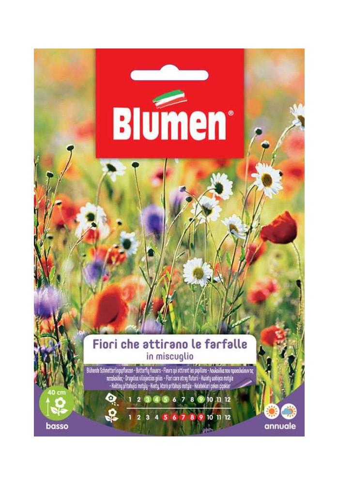 Fiori che attirano le farfalle in miscuglio - Blumen