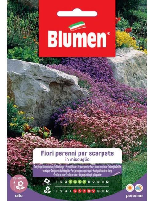 Fiori perenni per scarpate in miscuglio - Blumen
