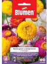Helicrysum o Semprevivo in miscuglio - Blumen