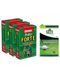 Promo Pack Prato Forte Premium 3 kg + Fertilizzante Fito Starter 1 kg - Blumen