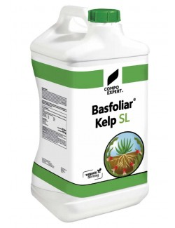 BASFOLIAR KELP SL BIOSTIMOLANTE NATURALE DA LT 10 COMPO