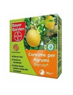 Baycote Agrumi da Kg 0,700 Bayer