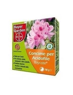 Baycote Acidofile da Kg 0,700 Bayer