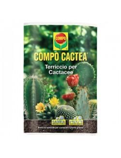 COMPO CACTEA® Terriccio per cactacee da Lt 5