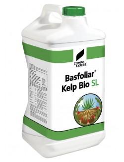 Basfoliar® Kelp Bio da Lt 10 - Compo Expert