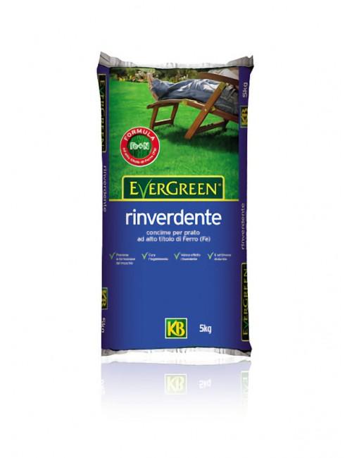 Concime Evergreen Rinverdente  da Kg 5 - KB Scotts