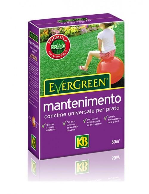 Concime Evergreen Mantenimento 20-5-8+2MgO da Kg 2 - KB