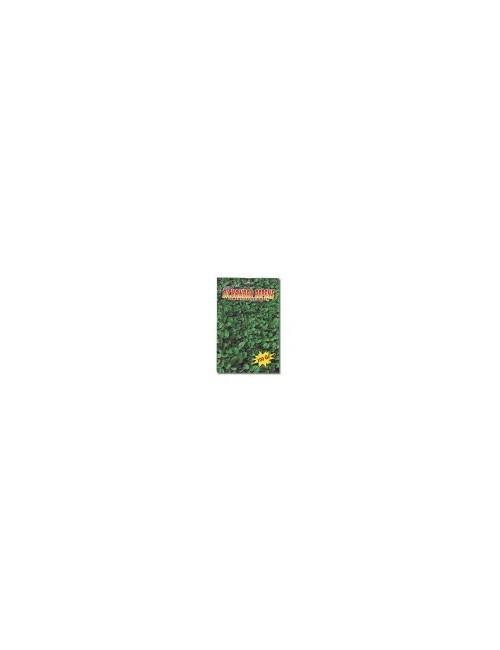Dichondra Repens da Kg 0,100 Bottos