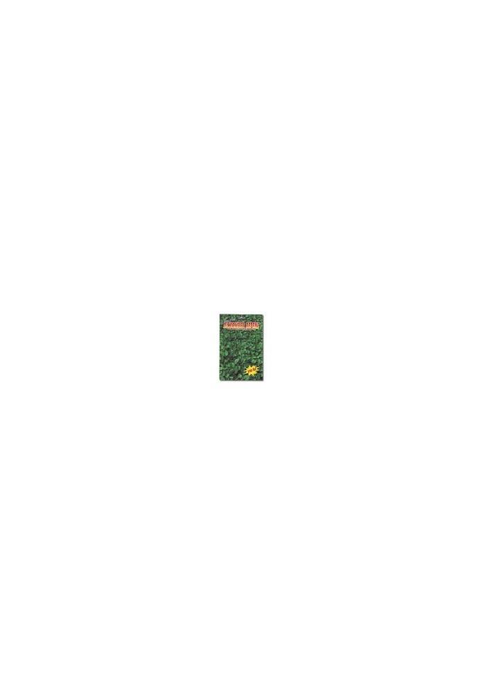 Dichondra Repens da Kg 0,500 Bottos